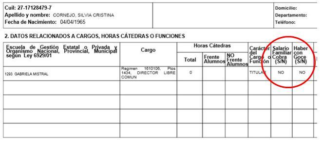 Detalle de la declaración jurada de Silvia Cornejo. Bajá la declaración completa aquí.