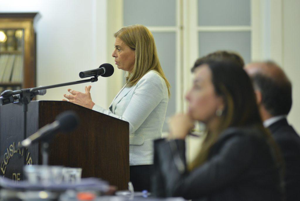 La vicegobernadora en la presentación de las bases ciudadanas.